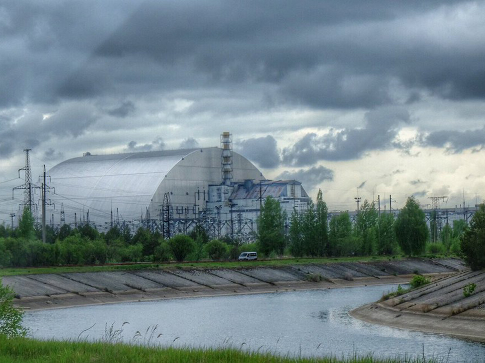 With humans out of the way, Chernobyl's wildlife thrives