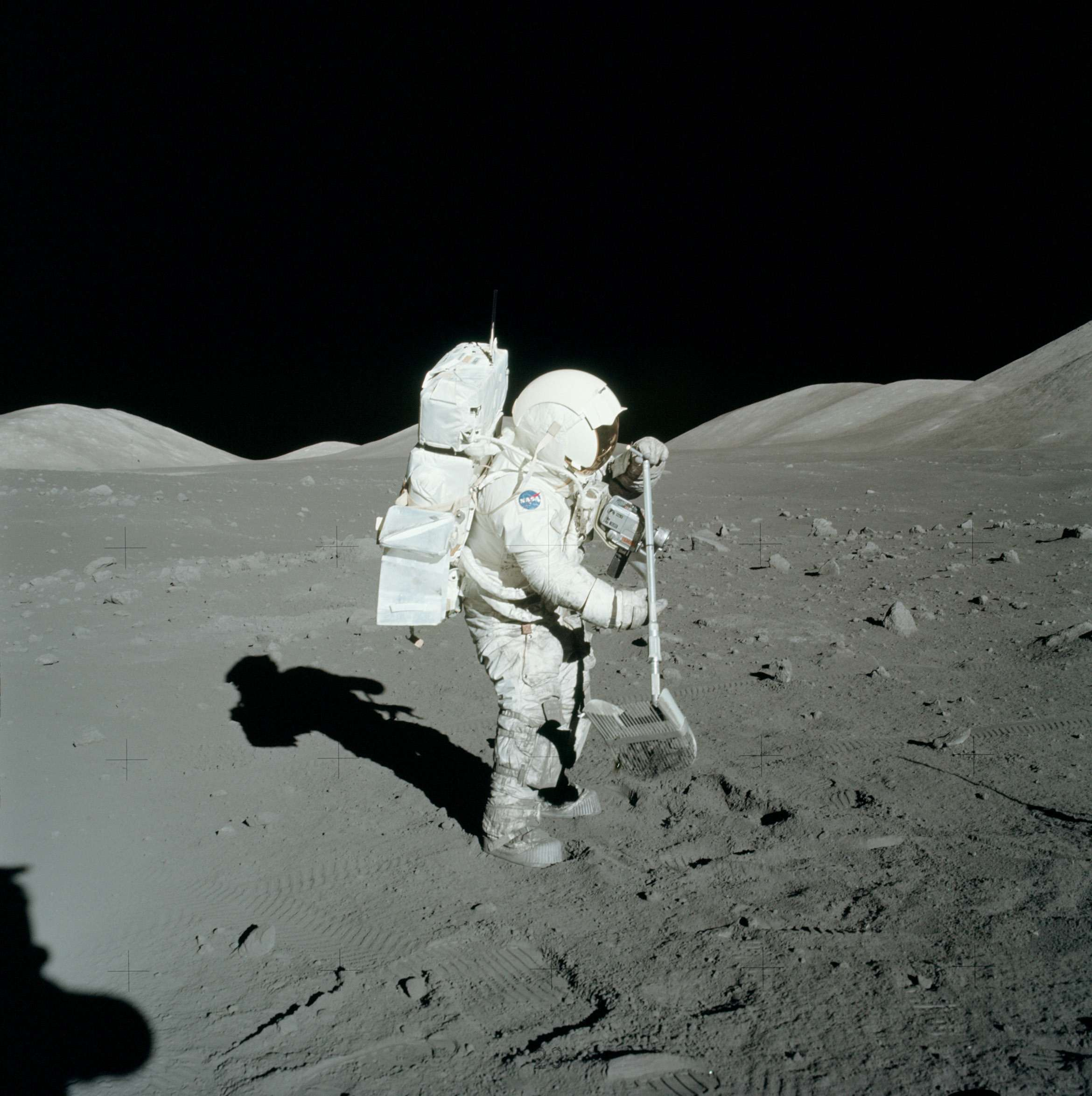 Why Did Apollo Lunar Samples Have Amino Acids In Them?