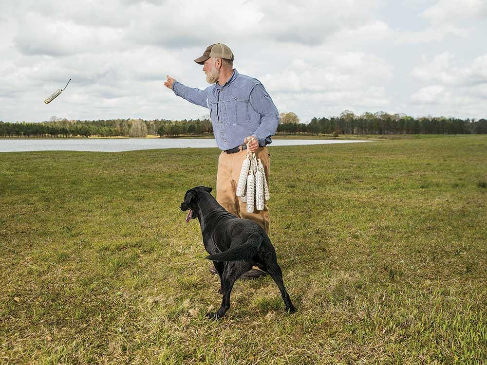 Three Essential Drills for Training a Duck Dog | Field & Stream