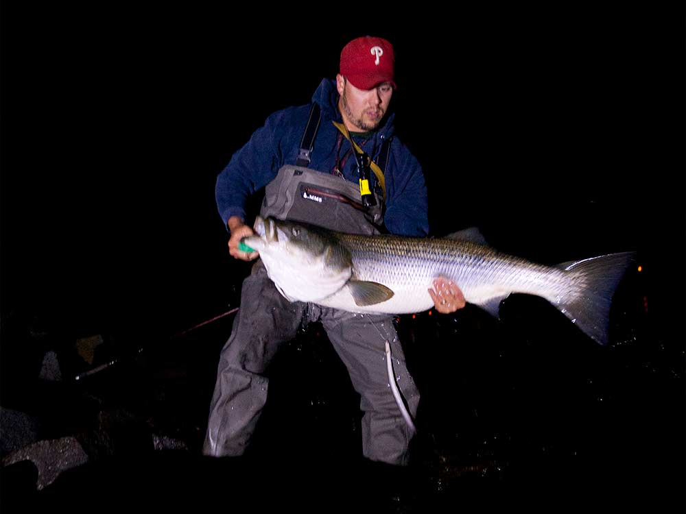 The 10 Reasons You're Not Catching Big Striped Bass in the