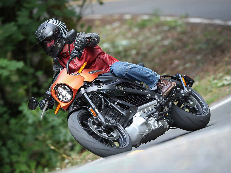 Harley Davidson Whining Noise
