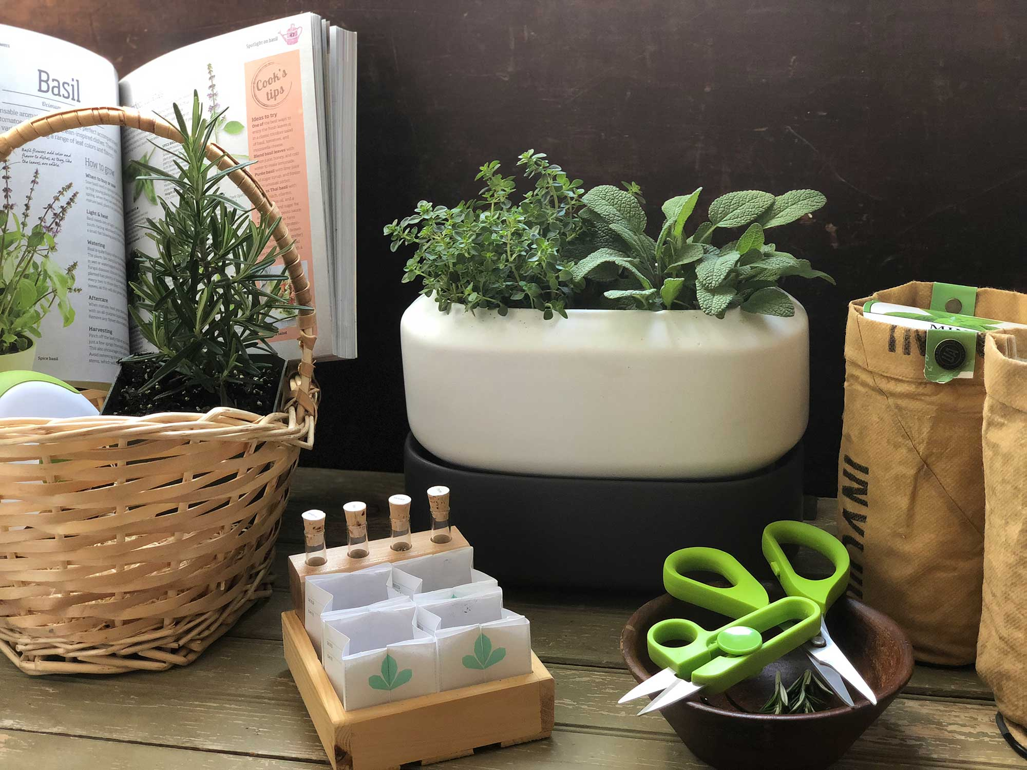 These Indoor Herb Gardening Kits Will Completely Change Your Summer Meals Saveur