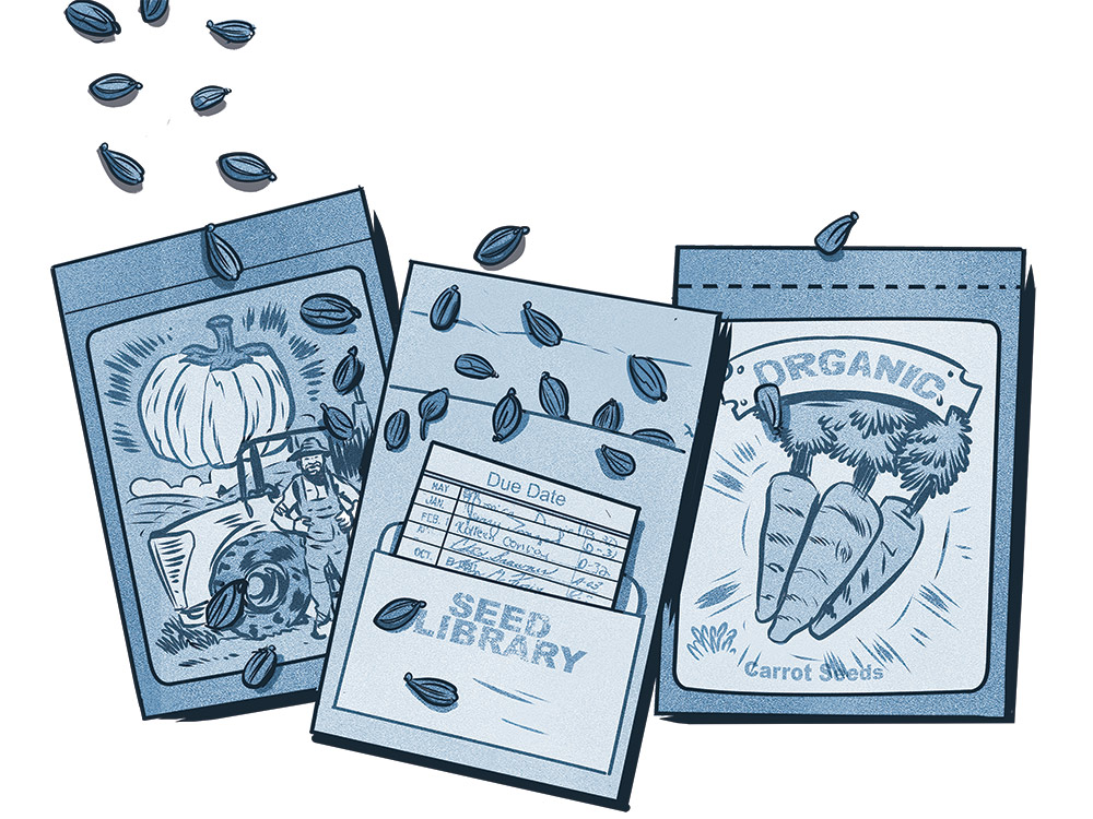 Save the world by saving your plants' seeds