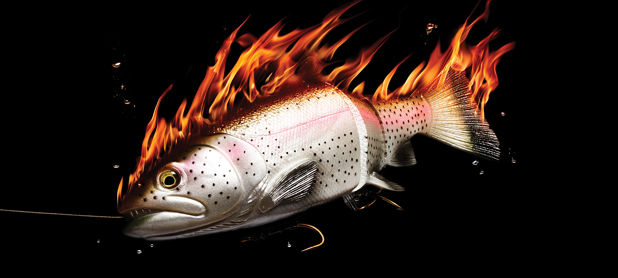 "6/"" Sassy Shad Swim Baits Swimbait Paddle Tail Striper Rockfish Lures 24 count"