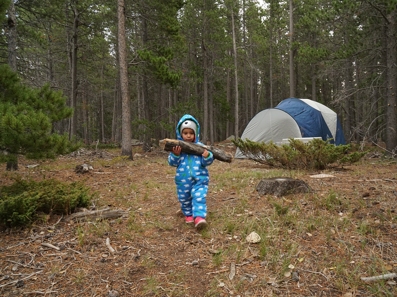 Eleven outdoor skills to teach your kids—or yourself