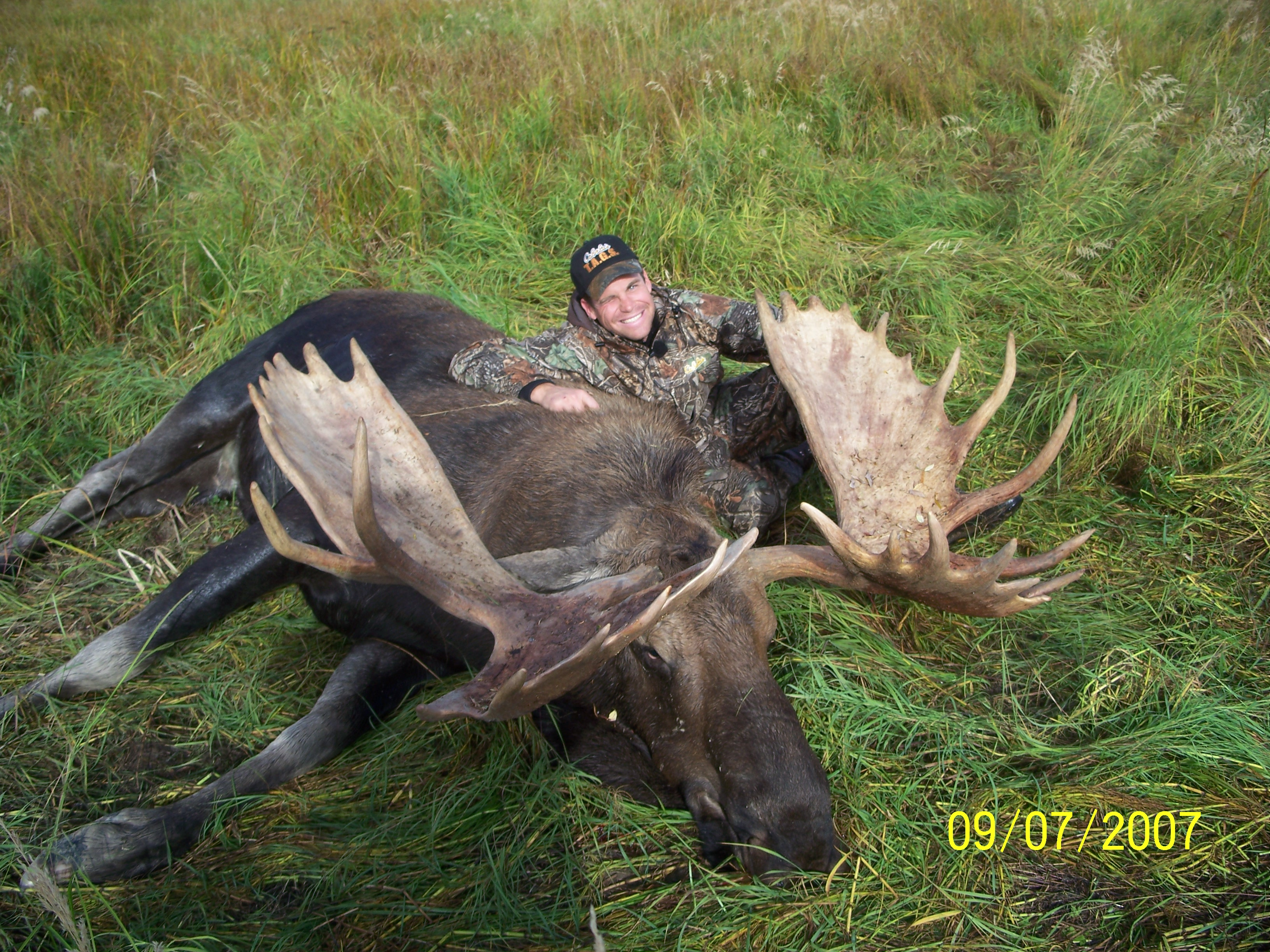 The Golden Age of Monster Moose is Now   Field & Stream