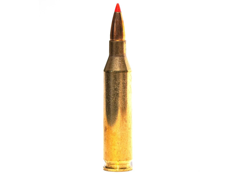 Bullets | Field & Stream