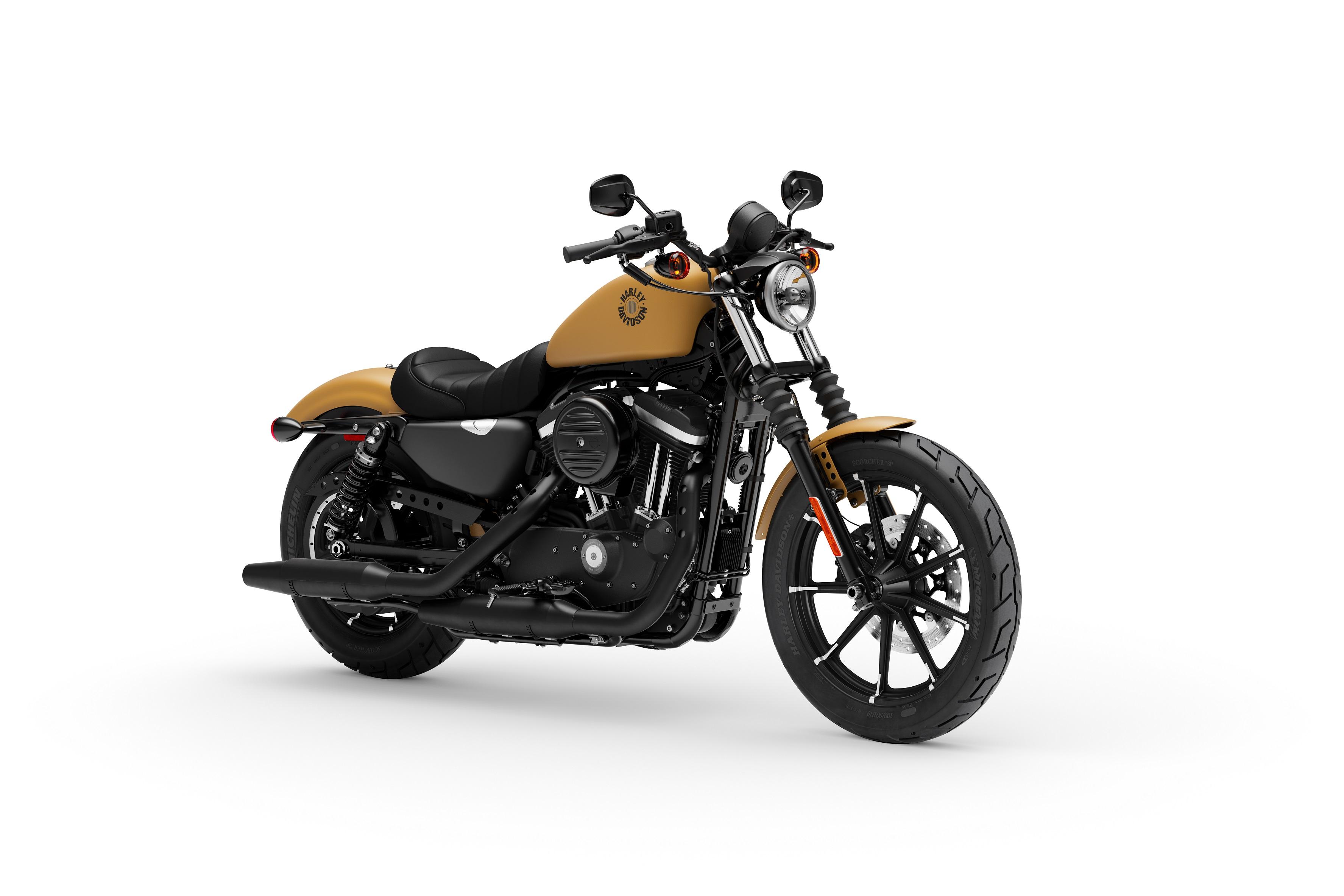 2020 Harley Davidson Sportster Iron 883 Cycle World