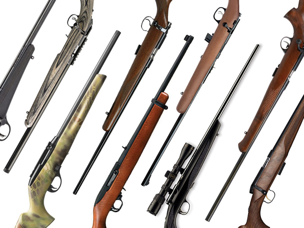 Truth About Air Rifles: 4 Guns You Can Actually Shoot