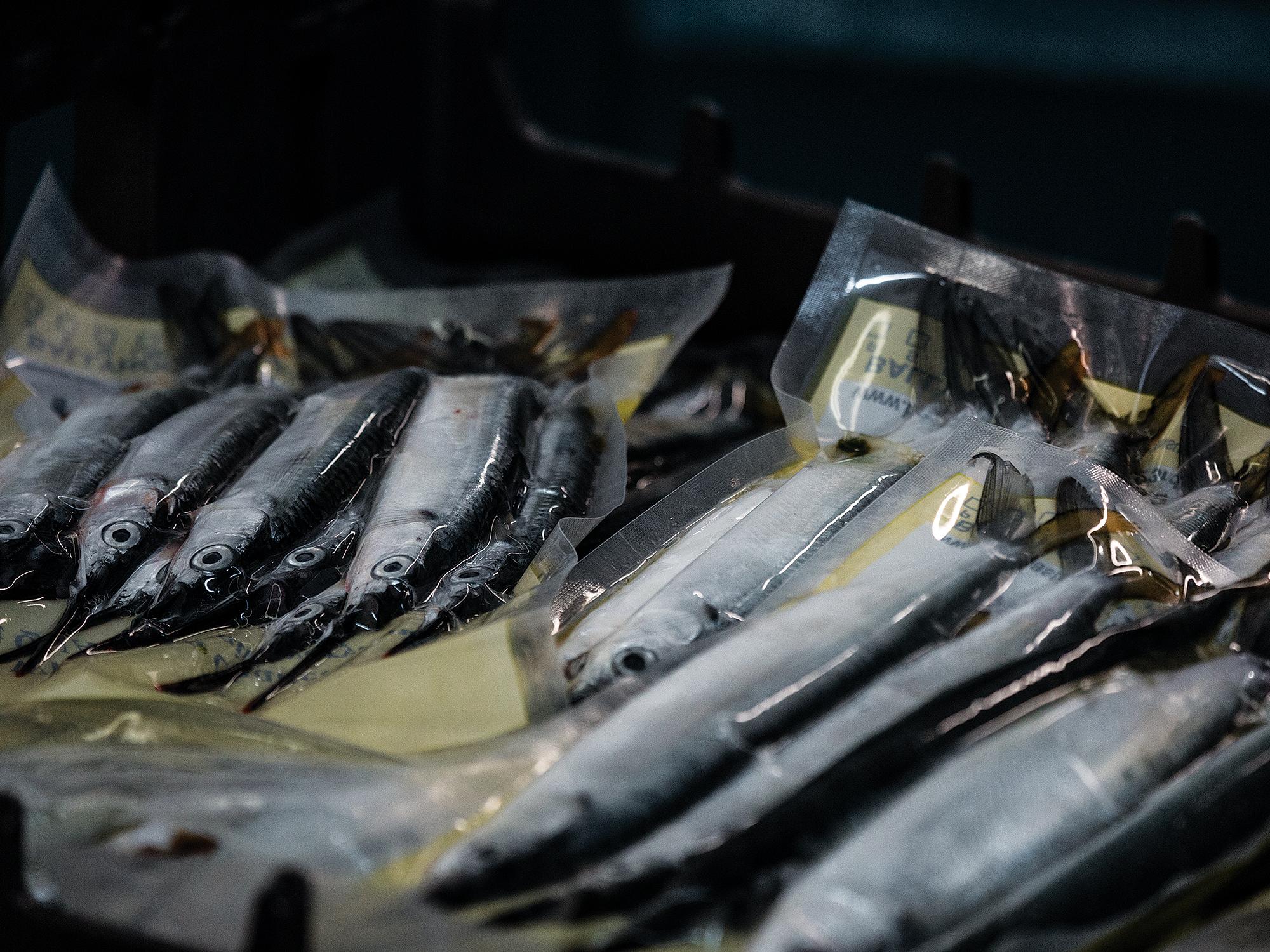 Baitmasters Talk Marlin and Sailfish Baits   Marlin Magazine