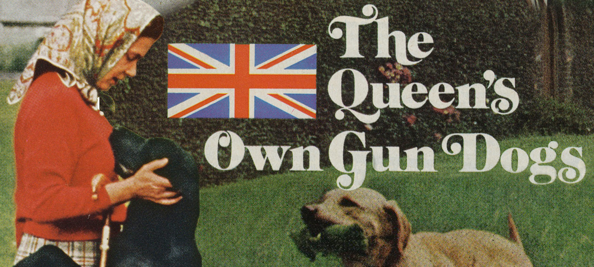 Queen Elizabeth II's Own Gun Dogs | Field & Stream
