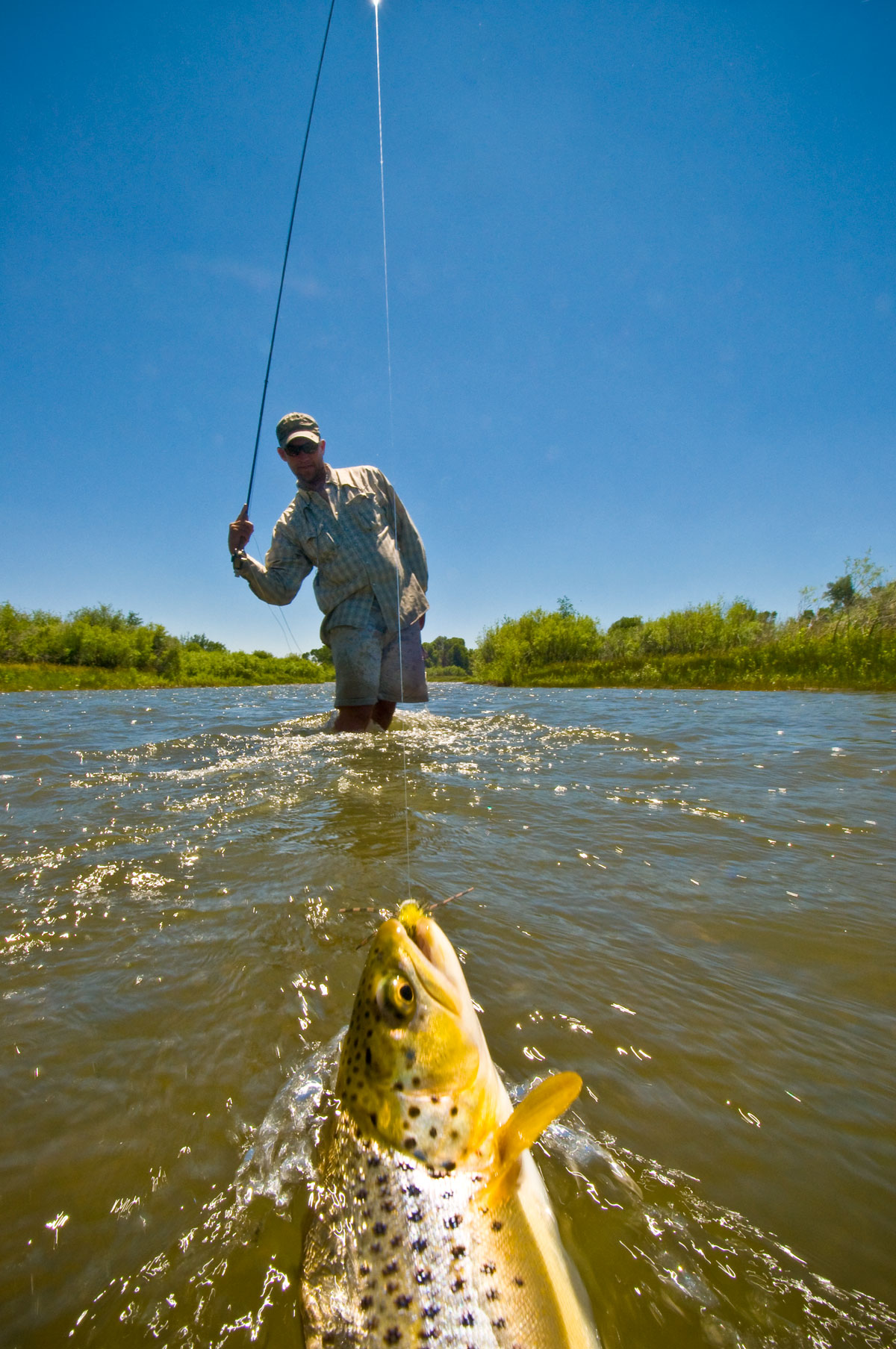 How To Choose Leaders And Tippets When Fly Fishing Field Stream