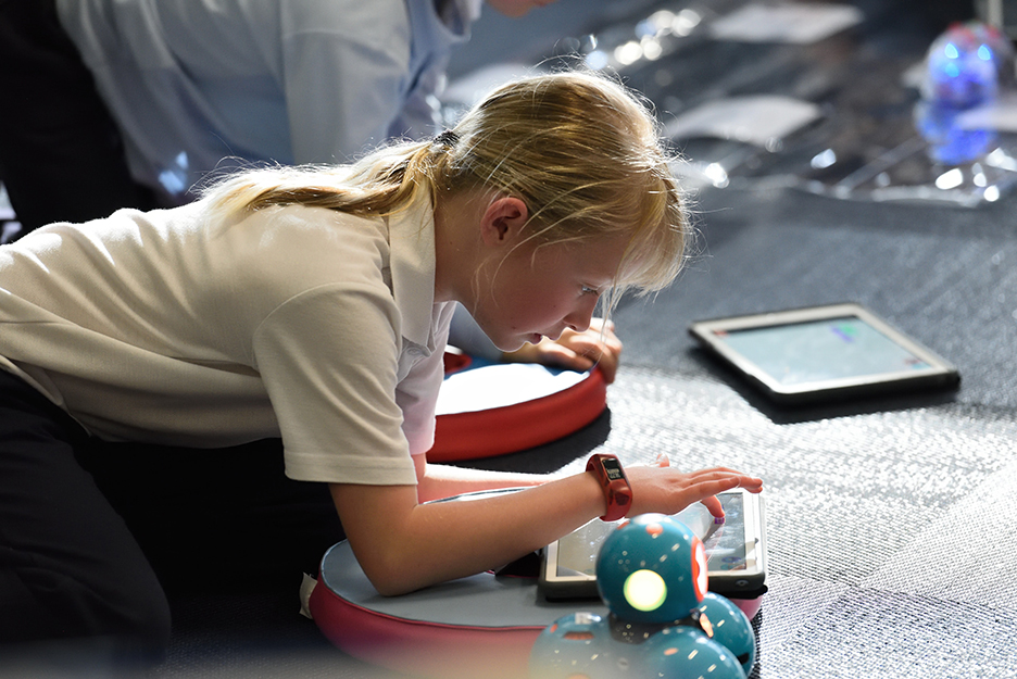 STEM toys that feel more like fun than homework