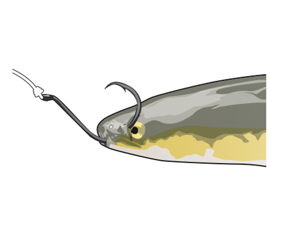 Ice Mite CRAPPIE-PANFISH/_ SOFT PLASTIC JIGS GLOW 12 COUNT